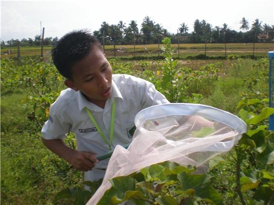 Siswa sedang melakukan penelitian  - alam sumber kehidupan 1 - Alam adalah Sumber Belajar