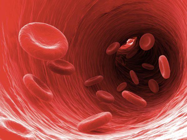 Ilustrasi Sel Darah Merah