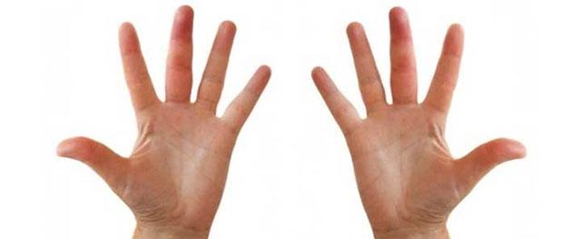 Telapak Tangan  - telapak tangan - Mukjizat Jari Jemari